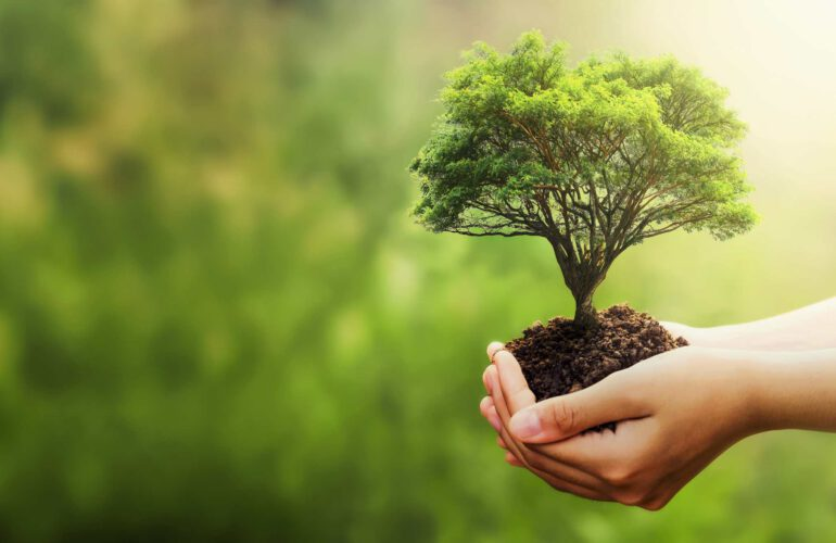 ISO 20121 Sürdürülebilir Etkinlik Yönetim Sistemi