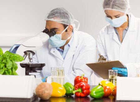 ISO 22000 Gıda Güvenliği Yönetim Sistemi IQNORM